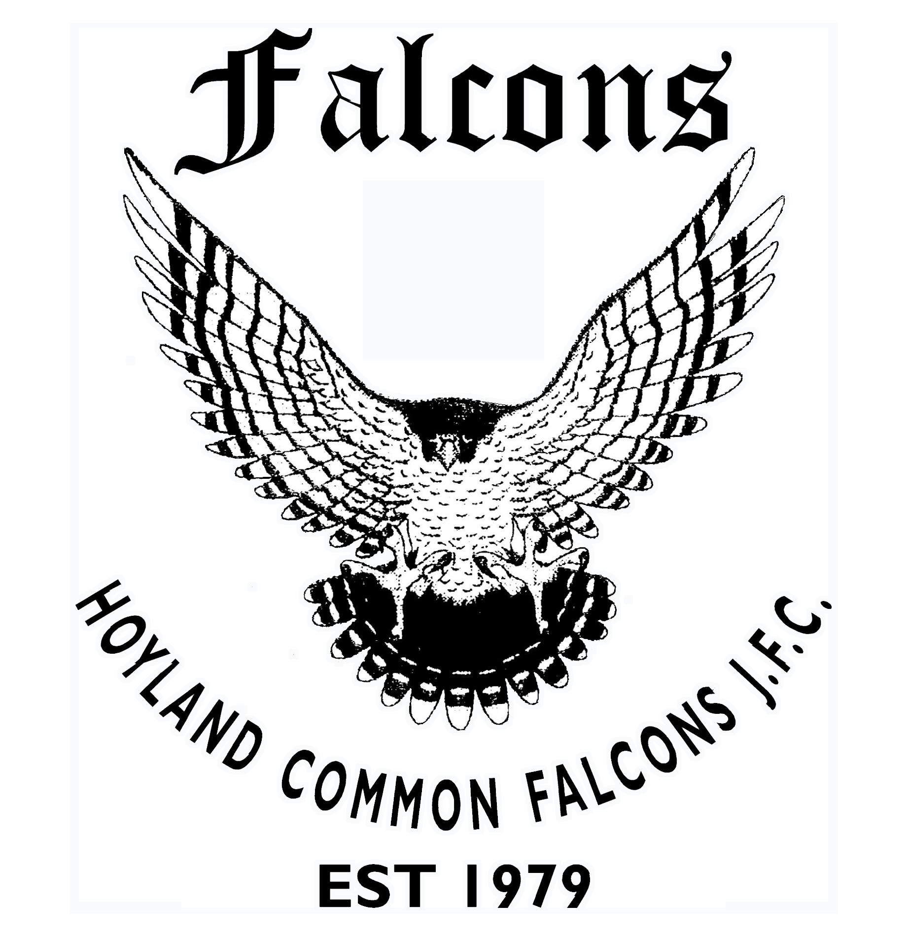 Hoyland Common Falcons JFC
